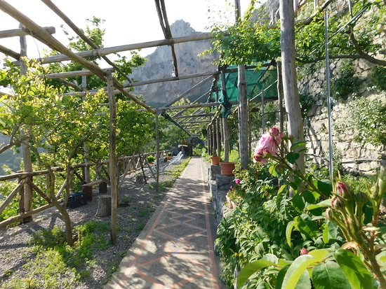 Montepertuso, Italia: the path to the bnb from the steps