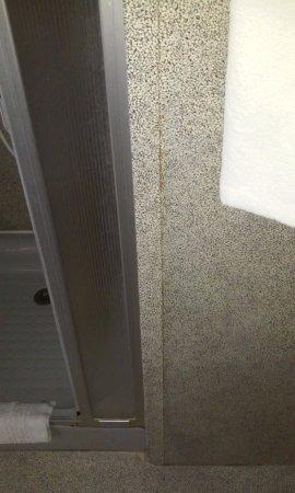 Cuiseaux, Francia: Lino de mur décollé de la salle de bain