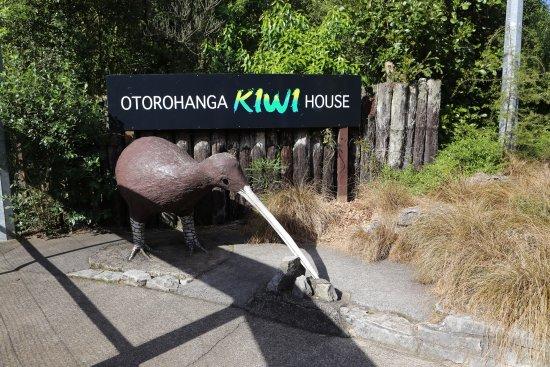 Otorohanga, New Zealand: Kiwi House