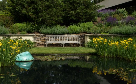 Donald M. Kendall Sculpture Gardens - Picture of Donald M. Kendall ...
