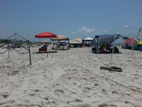 Gulf Shores Plantation: Lots of popups - but not crowded!
