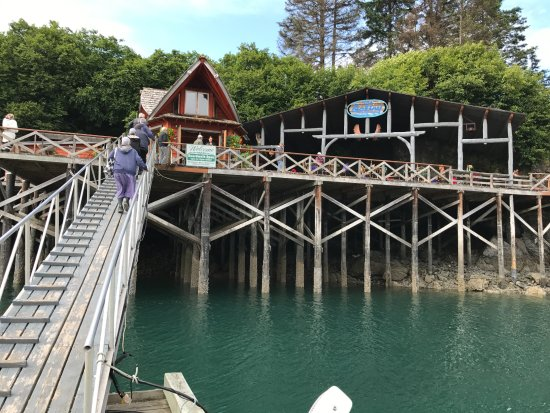 Halibut Cove, AK: The Saltry Restaurant