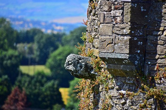 Gargoyle on one of the towers Ferns Castle