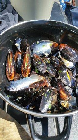 Nottinghamshire, UK: mostly smashed or unopened mussles