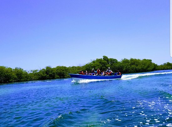 Monte Cristi, Dominican Republic: Manglares