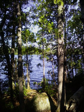Tofte, MN: View of Sawbill Lake through the trees.