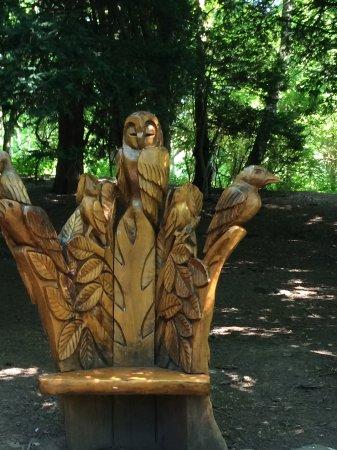 Danby, UK: Crow Wood
