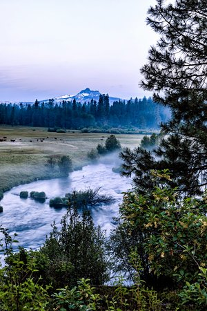 Camp Sherman, OR: Morning mist on the Metolius
