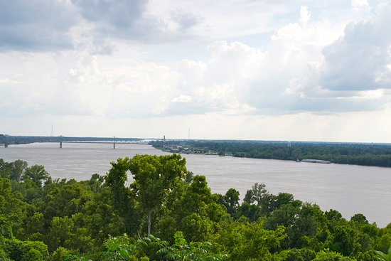 Marcia's Cottages: View of Mississippi River from Evergreen bluff