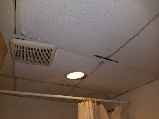 Cloud 9 Inn: rest of bathroom ceiling