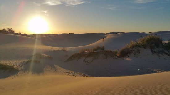 Monahans, TX : Sandhills at Sunset