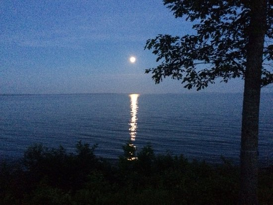Lincolnville, ME: The view from our cottage porch and front windows