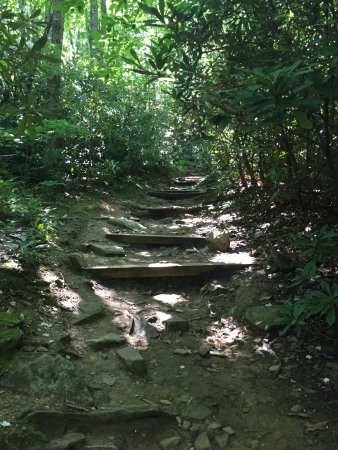 Montreat, Kuzey Carolina: Begining Path for Lookout Trail - see a lot of these stair type trails