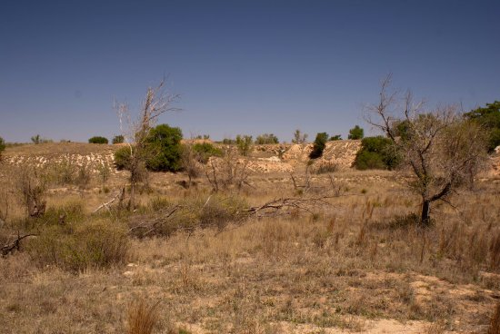 Portales, Nuevo Mexico: Not much to see from the trail