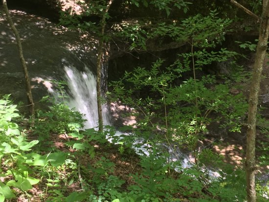 Yellow Springs, OH: Falls