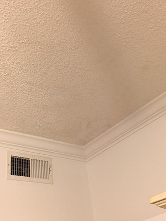 The Pearl of Navarre Beach: Ceiling mold