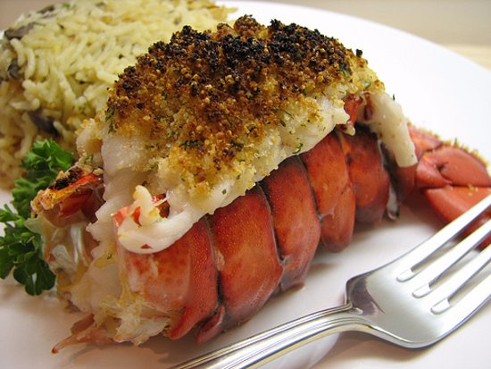 Briarcliff Manor, NY: Lobster Tail