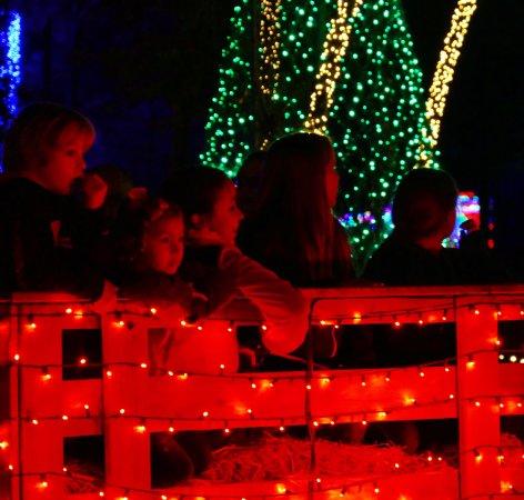santas wonderland take a hayride through the trail of lights - Christmas Lights College Station