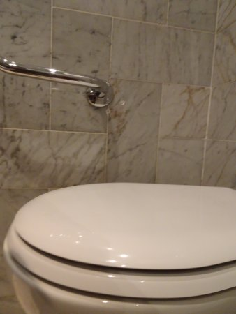 Lux Hotel Picpus : Barre d'appui / WC