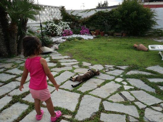 Il giardino sul mare bewertungen fotos riva ligure - Il giardino sul mare ...