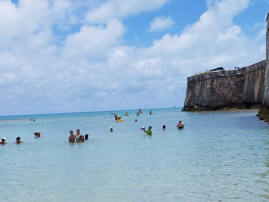 Somerset Village, Bermuda: Snorkel Park main swimming area
