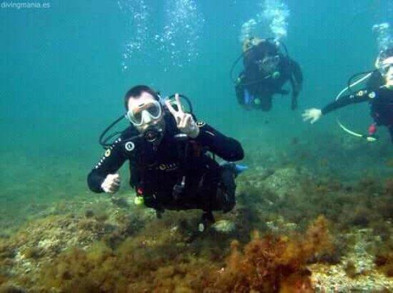 Divingmania: BUCEANDO EN PALAMÓS.