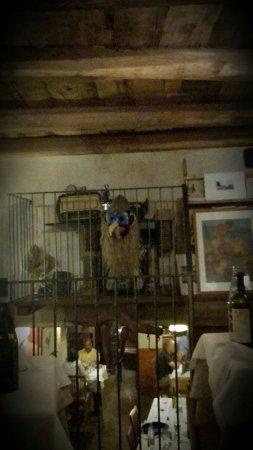 Murazzano, Italy: Vista dal nostro tavolo