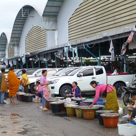 Cha-am, Tailandia: Fresh sea food galore