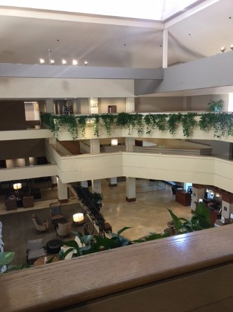 Rohnert Park, CA: Lobby view from the 3rd floor