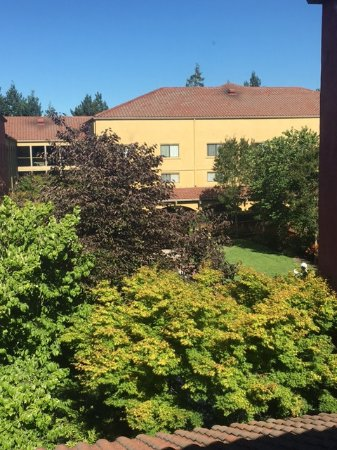 Rohnert Park, CA: View of the grounds from the 3rd floor