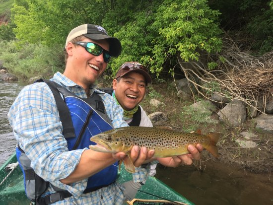 New Castle, CO: One more nice brown trout!