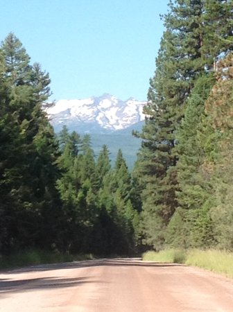 Condon, MT: Drive as we left Holland Lake Lodge