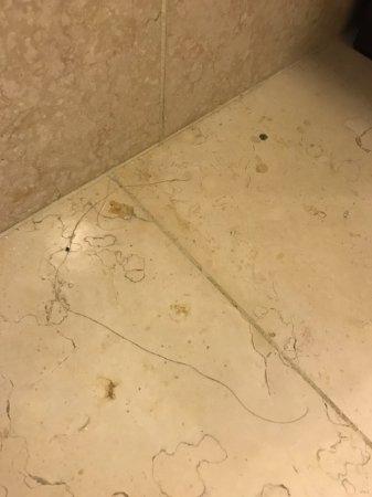 The Ritz Carlton Aruba Bathroom Floor With Hair Upon Arrival Not Luxury