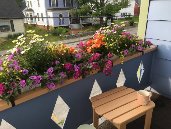 Bethel, ME: Beautiful flowers on the porch and a view of Main Street with morning coffee. Pristine clean roo