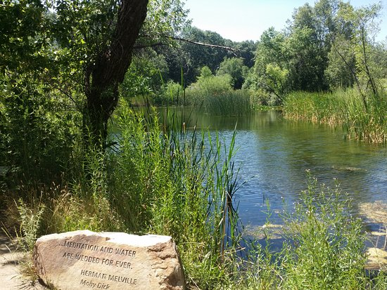 Oak Glen, CA: Watch for ducks and dragonflies at the pond.