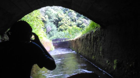 Hawi, HI: Emerging from tunnel
