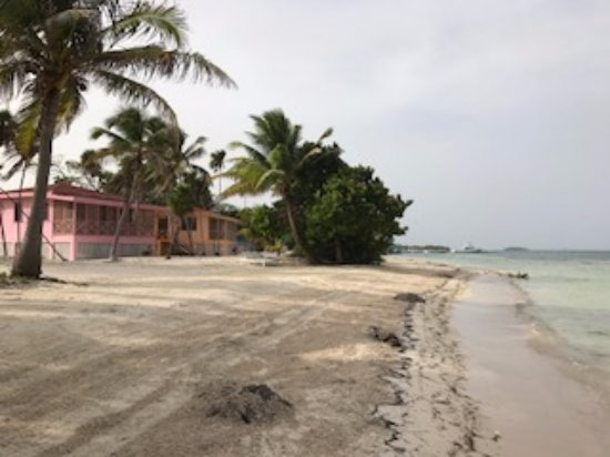 Turneffe Island, Belize: Cabanas to the right of the Palapa bar - lots of hermit crabs here at dusk!