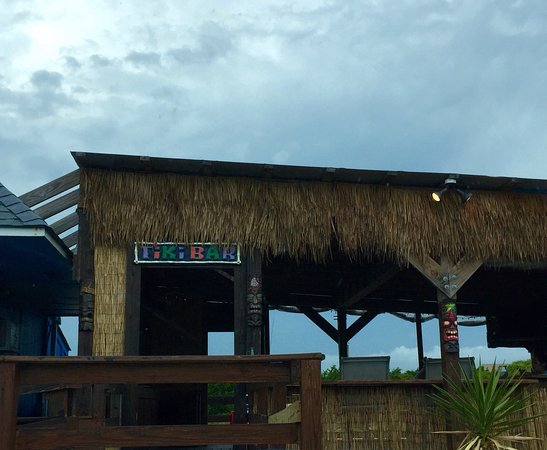 Fat Turtle Market & Tiki Bar