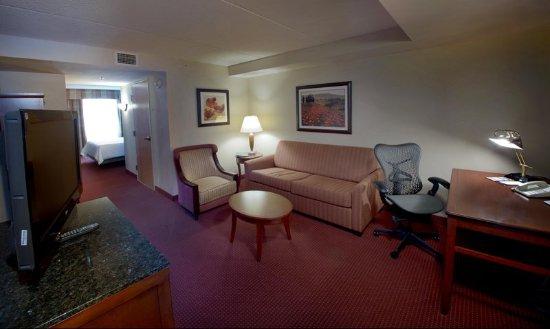 Canonsburg, Πενσυλβάνια: Junior King Suite Lliving Room