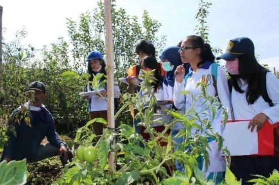 Wisata Desa Agro Bumiaji