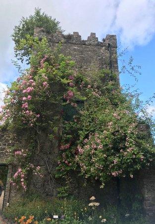 Malahide, Ιρλανδία: Garden