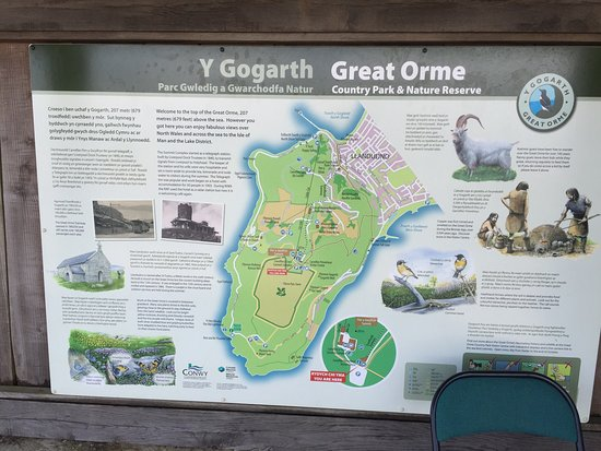 Great Orme 사진