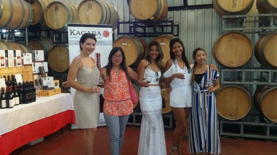 Vineland, Canada: Great wine tasting experience at Kacaba!