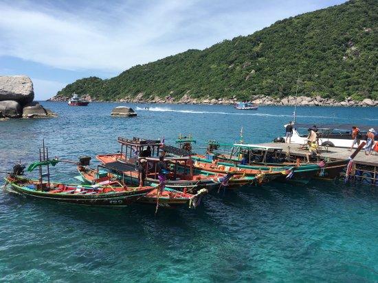Koh Nang Yuan : photo4.jpg