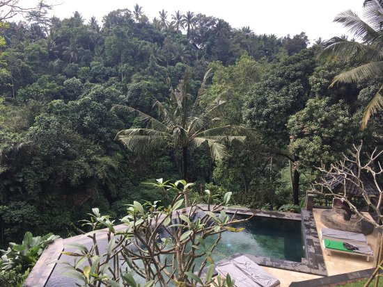 Beji Ubud Resort: photo0.jpg