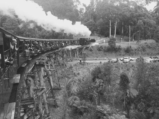 Belgrave, ออสเตรเลีย: photo2.jpg