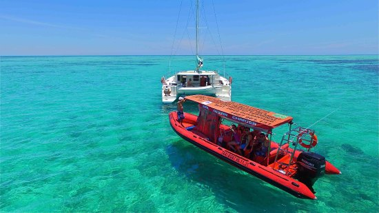 Dalocean Charter - Day Tours