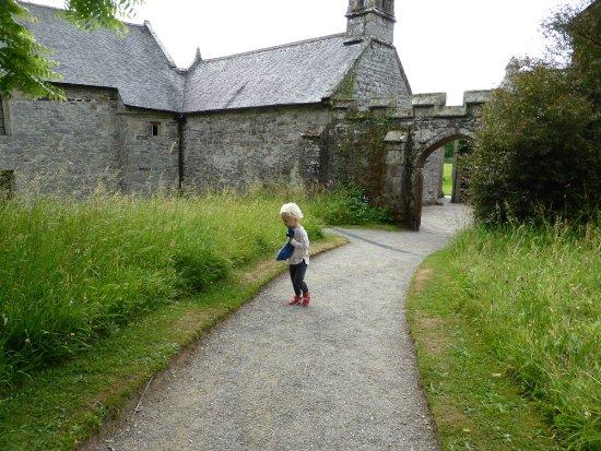 St Dominick, UK: Lush grounds