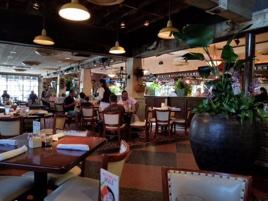 Bar And Dining Area At Pappadeaux Picture Of Pappadeaux Seafood Kitchen Albuquerque Tripadvisor