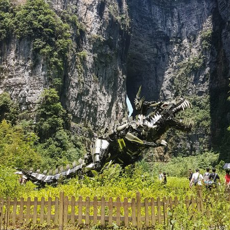 Chongqing Wuling Mountain Forest Park All You Need To